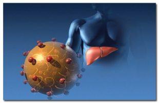Разновидности гепатитов по МКБ-10