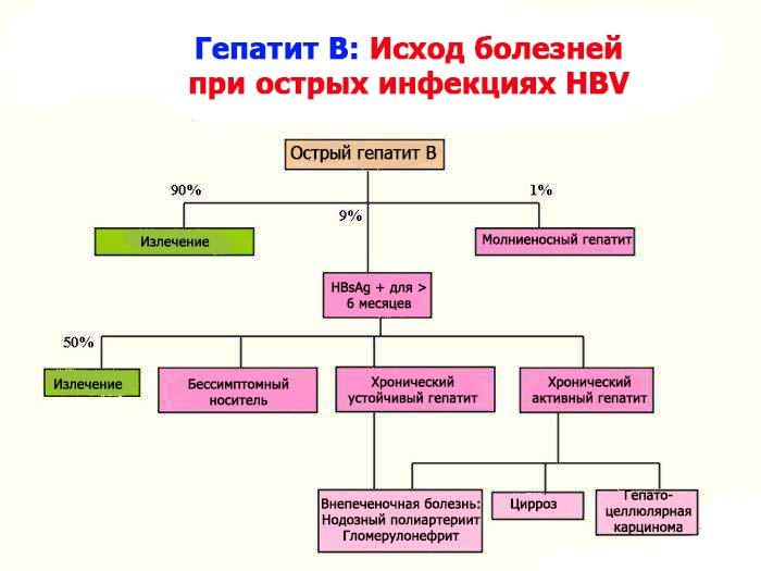 Исход болезней при гепатите В