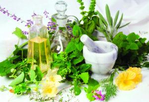 Народные средства при токсическом гепатите