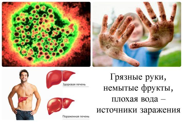 Источники передачи гепатита А