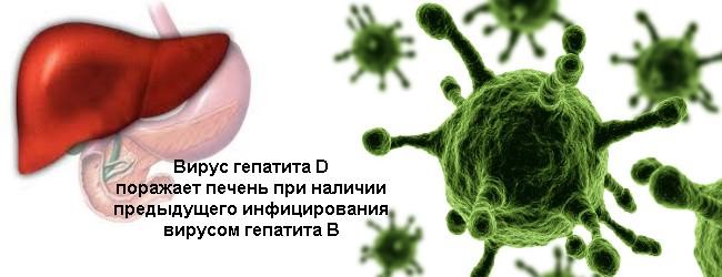 Особенности гепатита Д