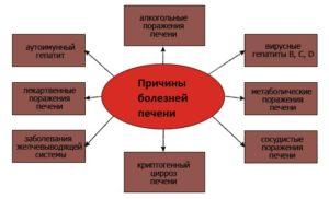 Причины развития гепатита