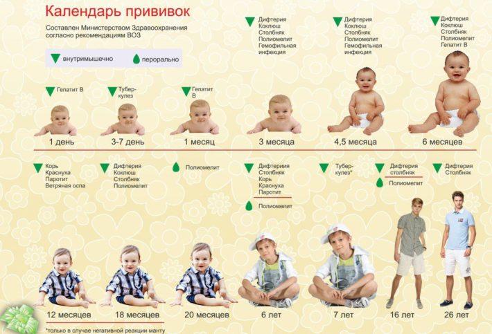 Календарь прививок по ВОЗ
