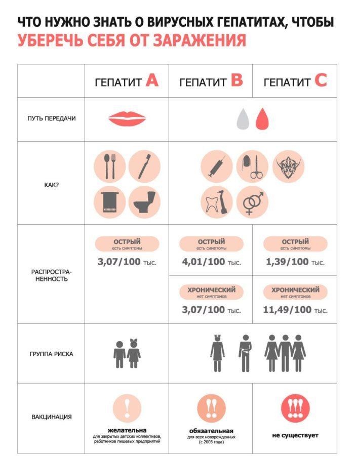 Краткая информация о вирусных гепатитах
