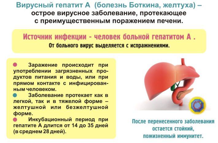 Общие сведения о гепатите А