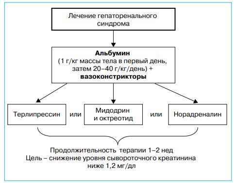 Общие принципы лечения гепаторенального синдрома