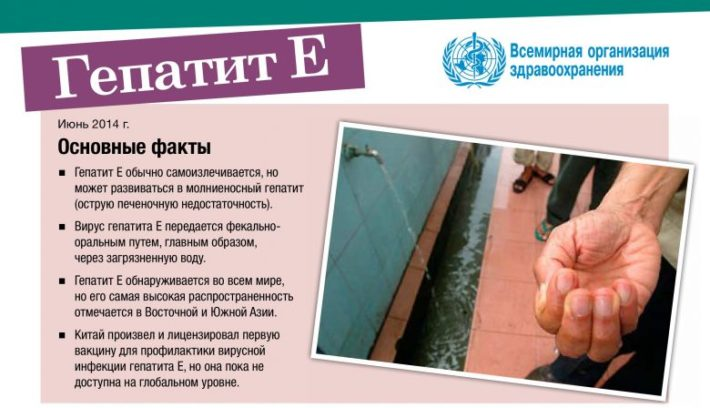 Основные факты о гепатите Е