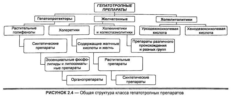 Общая структура класса гепатотропных препаратов