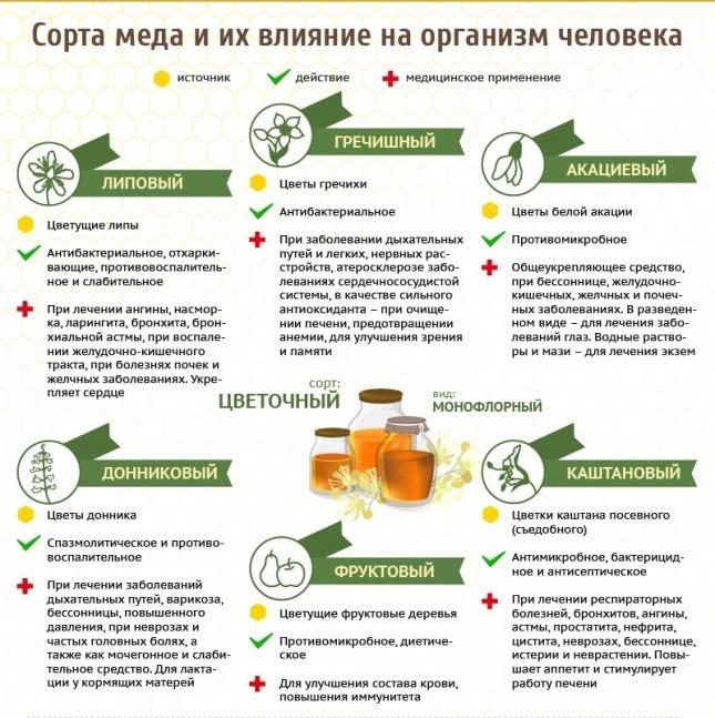 Сорта меда и их влияние на организм