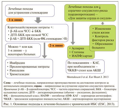 Основные подходы к лечению больного с хронической ИБС