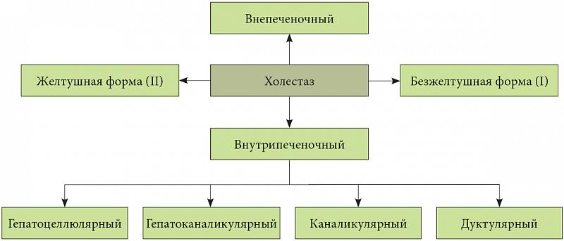 Формы холестаза
