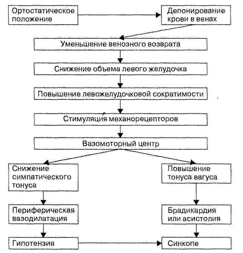 Гипотензия ортостатической формы