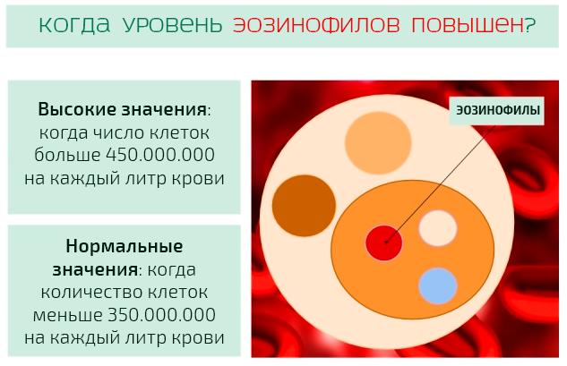 Уровень эозинофилов в крови