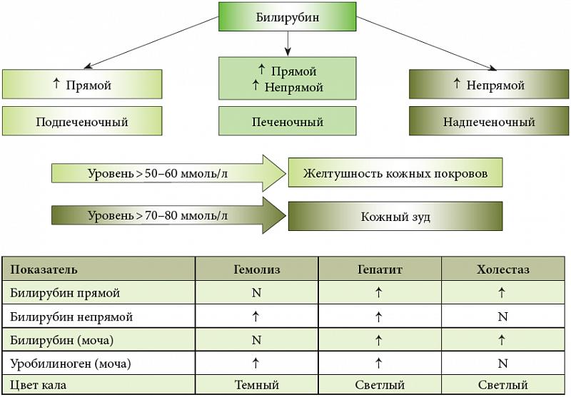 Клиническая классификация и дифференцирование холестаза