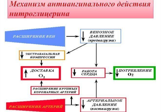 Механизм действия нитроглицерина