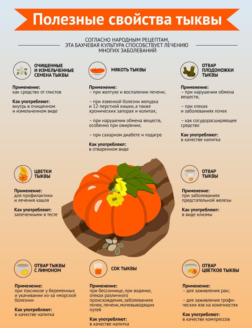 Целебные свойства тыквы