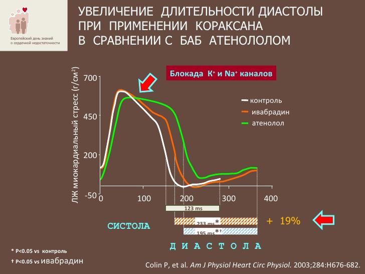 Увеличение длительности диастолы при применении Кораксана