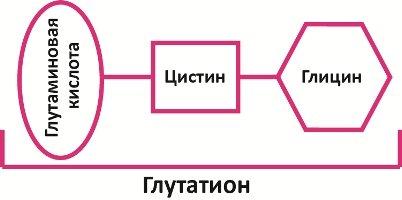 Состав
