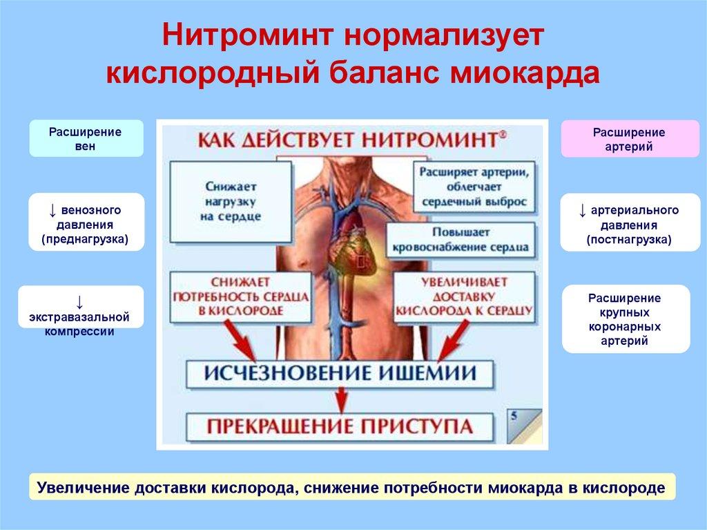 Действие Нитроминта