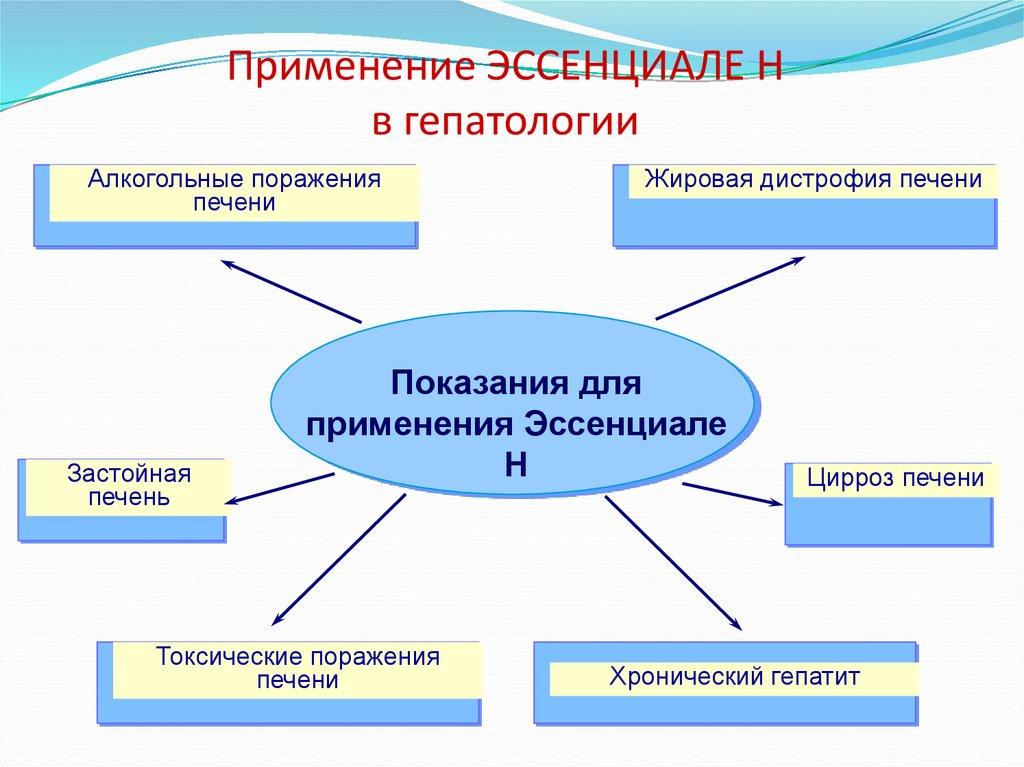 Применение Эссенциале в гепатологии