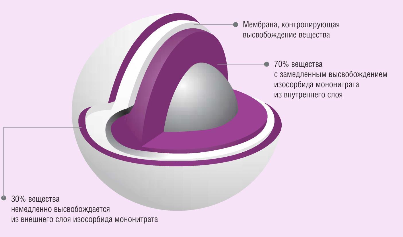 Особенности строения капсул пролонгированного действия