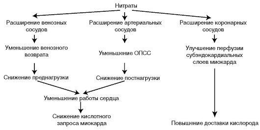 Механизм действия нитратов на системном уровне
