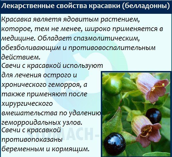 Лекарственные свойства беладонны