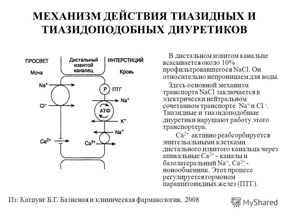 Механизм действия тиазидных диуретиков
