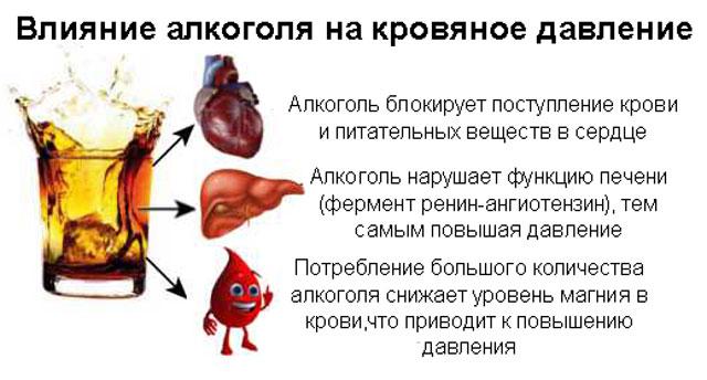 Влияние алкоголя на АД