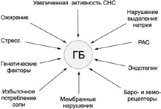 Факторы развития ГБ