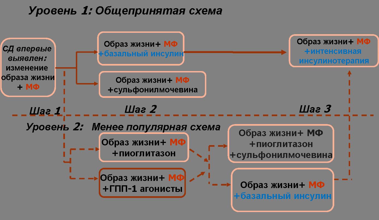 Алгоритм лечения СД 2 типа