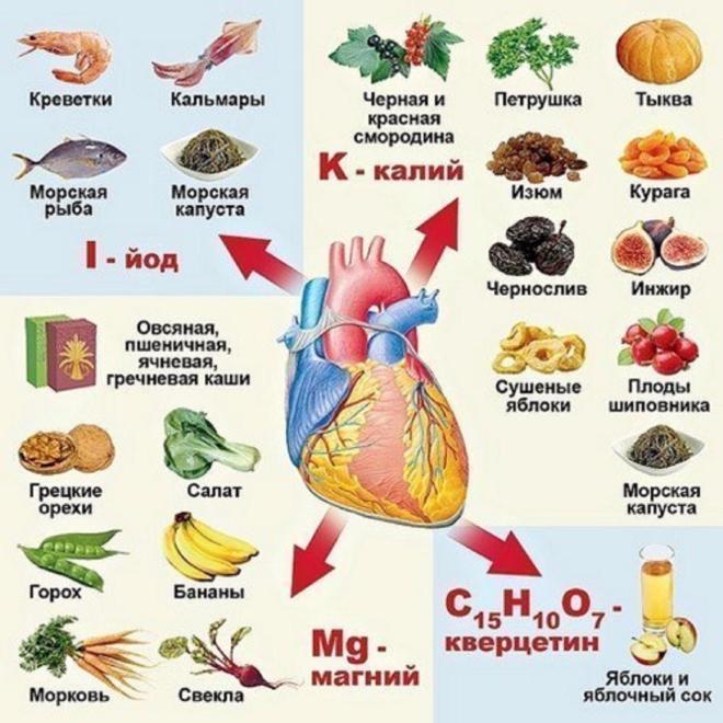 Питание при заболеваниях сердечно-сосудистой системы