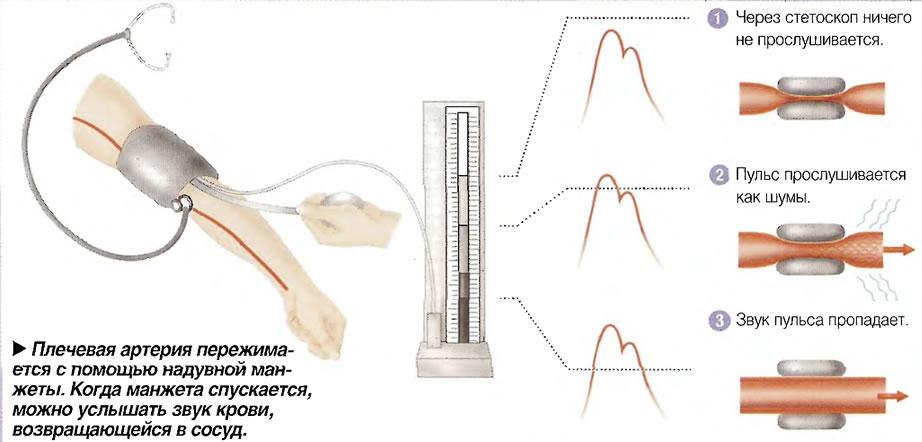 Измерение АД