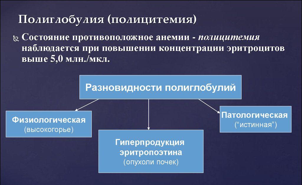 Полиглобулия