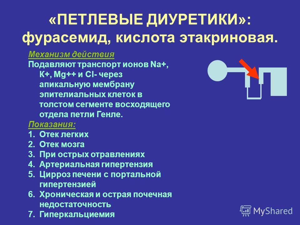 Характеристика петлевых диуретиков