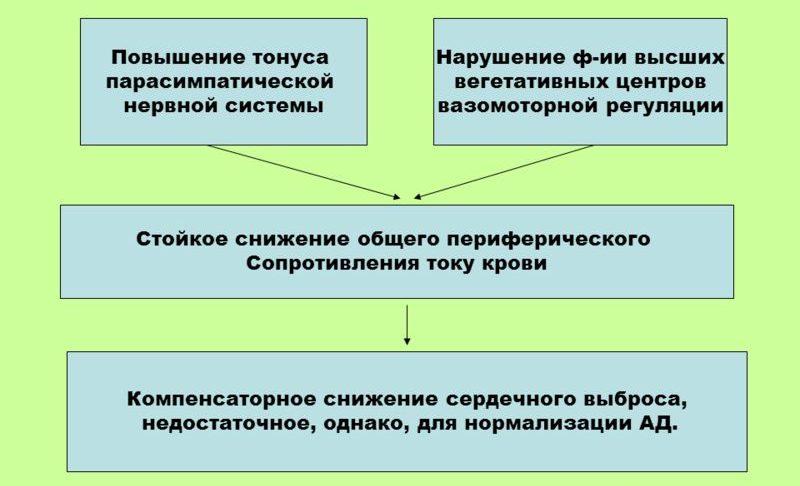Развитие первичной гипотонии