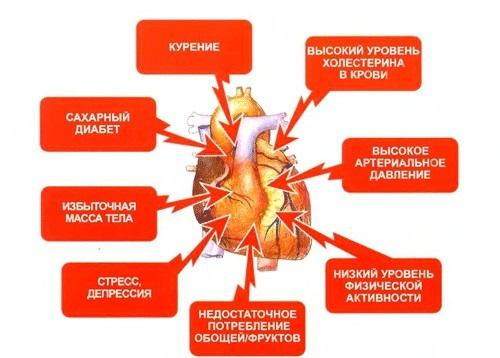 Причины заболеваний ССС