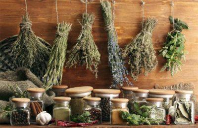 Польза лекарственных растений