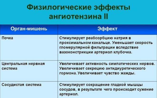 Эффекты ангиотензина