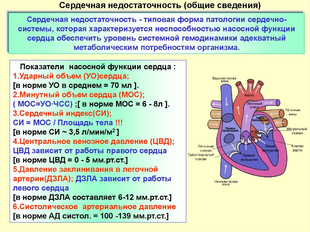 Общие сведения о недуге