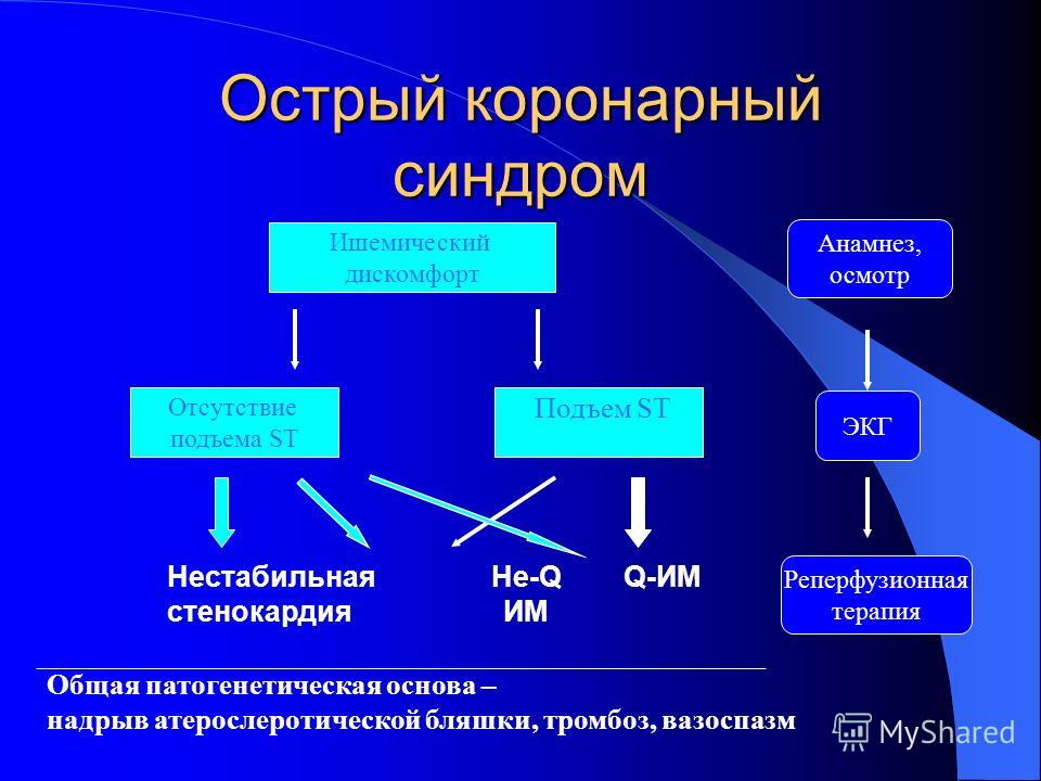 Характеристика ОСК