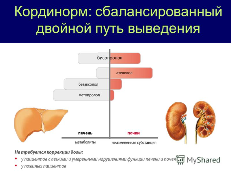 Пути выведения препарата
