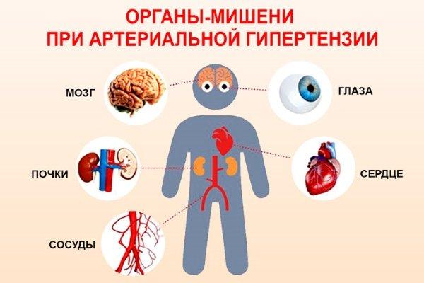 Органы-мишени при гипертонии