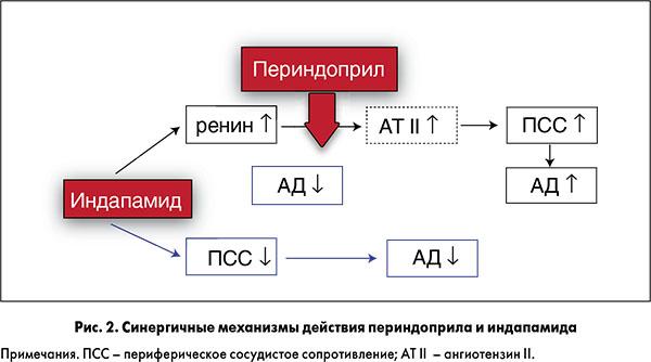 Механизм действия периндоприла и индапамида