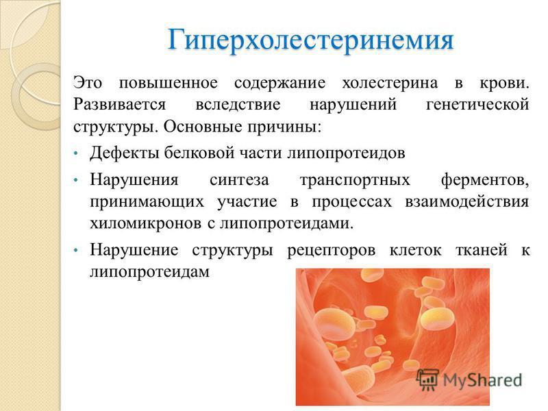 Первичная гиперхолестеринемия
