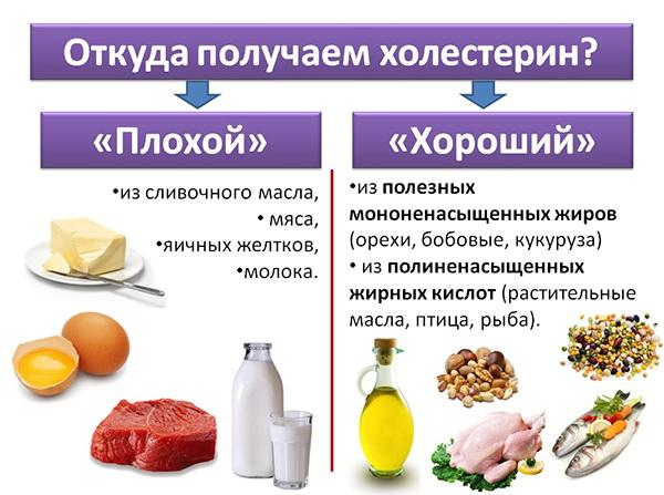 Поступление холестерина через пищу