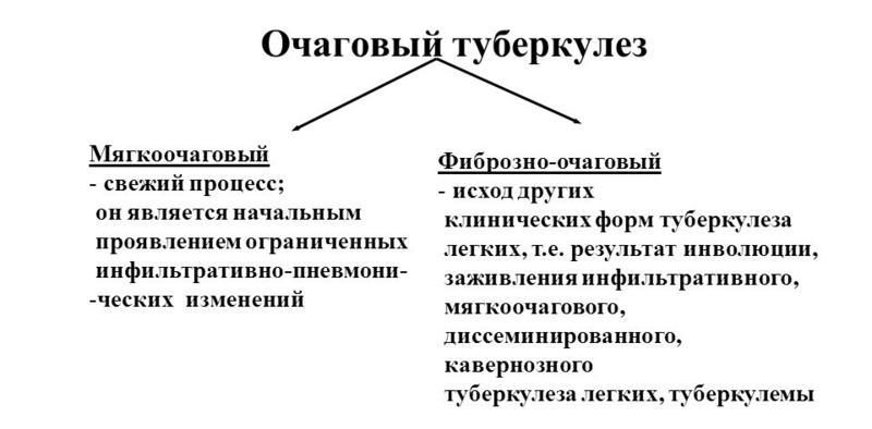 Виды патологии