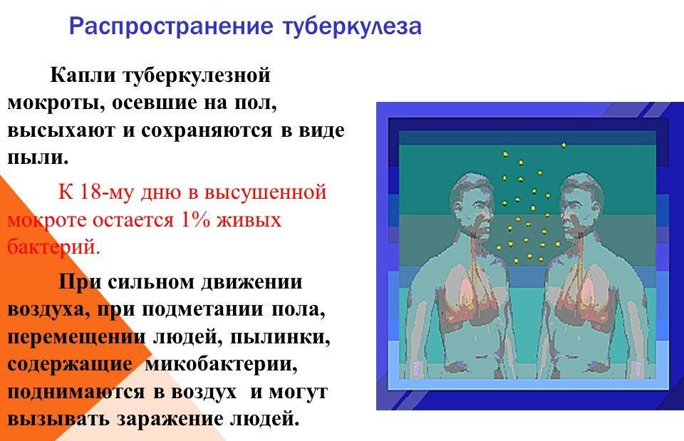 Распространение туберкулеза