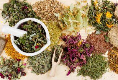 Лекарственные травы от гепатита