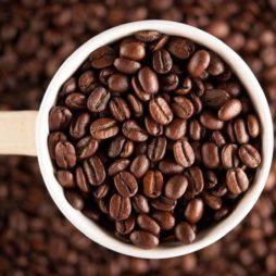 Польза и вред кофе для печени